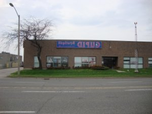 Schainez sex club in Chippewa Falls Wisconsin